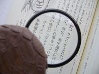ルーペ拡大図.jpg