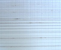 白大島紬縞柄4月ブログアップ画像.JPG