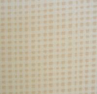 格子 ベージュアップ.JPGのサムネール画像