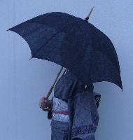 中柄日傘.JPG