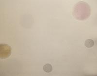 200水玉襦袢アップ.JPGのサムネール画像
