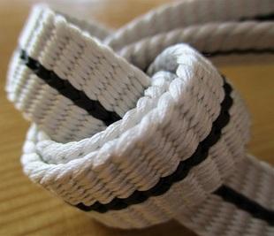 sakura 帯締 一本線 白地 500px.jpg