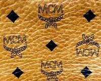MCM2.JPG